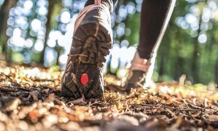 идеи за спорт през есента